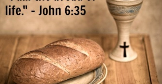 Sermon for Sunday August 8th, 2021