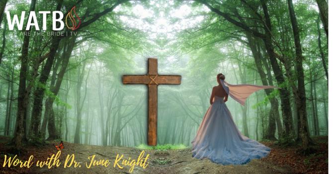 "Dr. June Knight - ""Sharing Testimony"" image"
