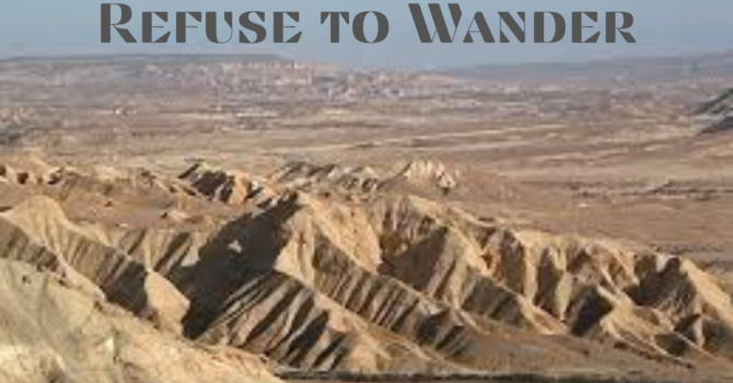 Refuse to Wander