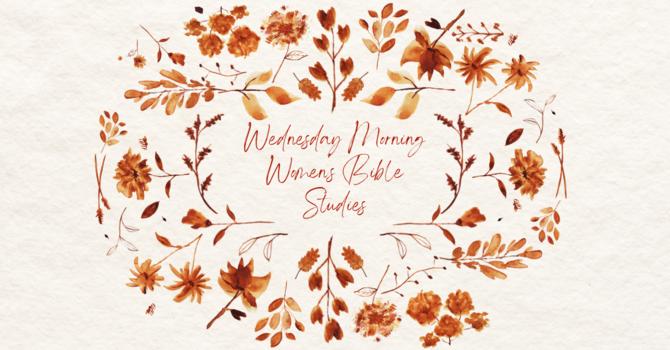 Wednesday Morning Women's Bible Studies (CHatS)