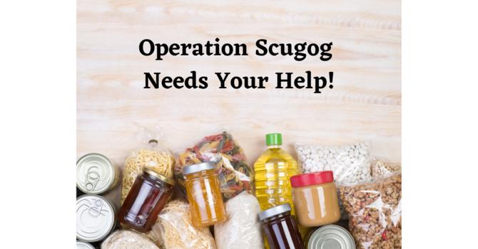 Operation Scugog Needs our Help! image