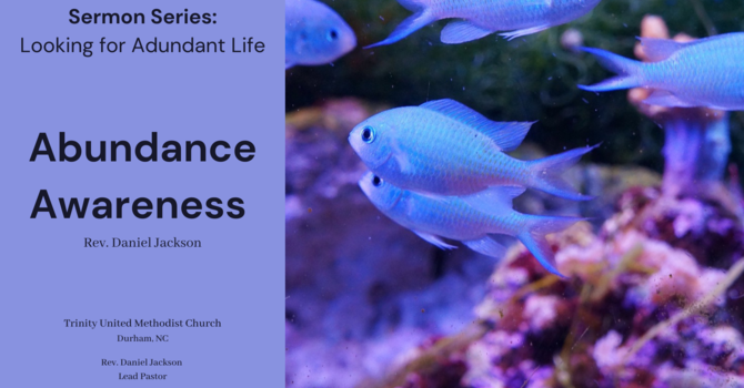Abundance Awareness