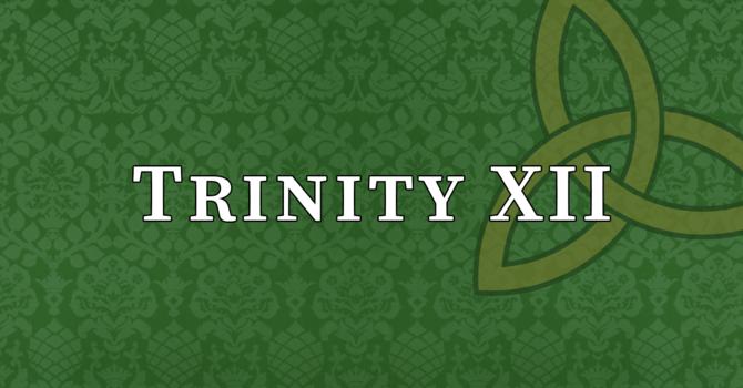 Trinity XII