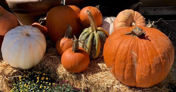 FLBC Fall Harvest Festival and Auction