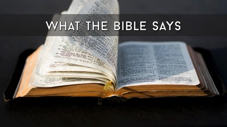 What The Bible Says