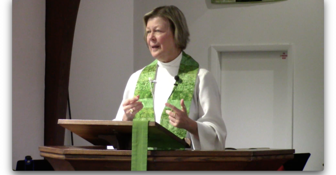 Sermon for Twelfth Sunday after Pentecost