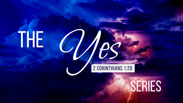 The YES Series