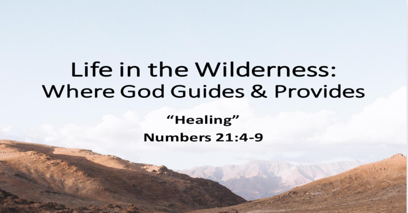 Life in the Wilderness: Where God Guides & Provides