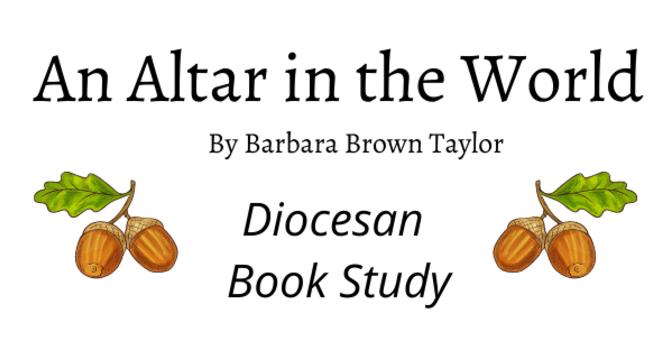 Diocesan Book Study