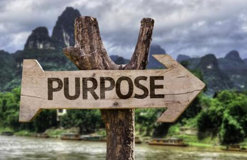 What am I doing with God's purpose for my life?