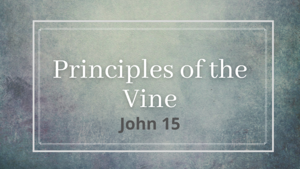Principles of the Vine