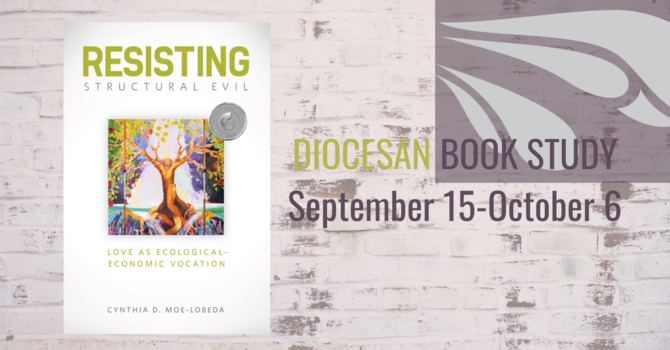 Diocesan Online Book Study