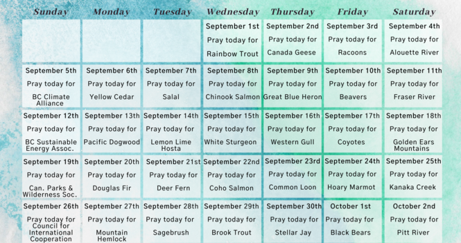 A prayer calendar for the season of creation 2021