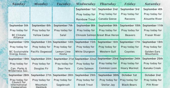 A prayer calendar for the season of creation 2021 image
