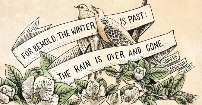Winter Is Over image