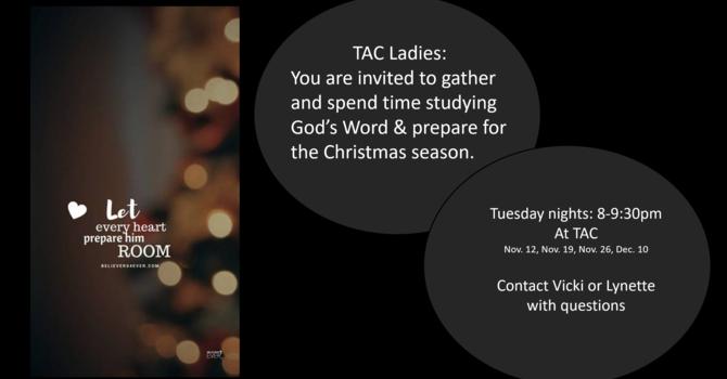 Women's 4-Week Bible Study