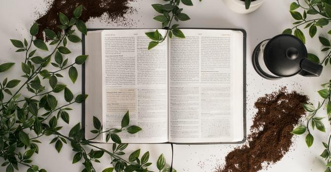 Power of Scripture image