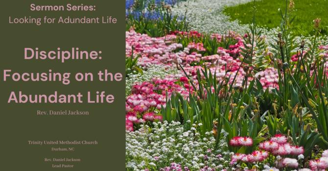 Discipline: Focusing on the Abundant Life