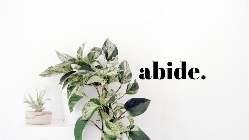 Enemies of Abiding