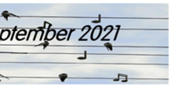 September 2021 Lifewire
