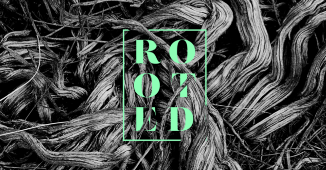 Youth Network Fall Retreat: Rooted
