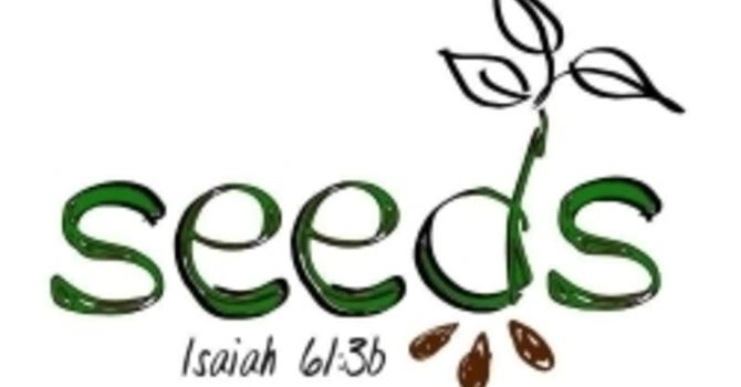 SEEDS (Children's Wednesday Night Activities)