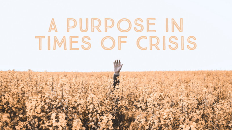A Purpose in Times of Crisis
