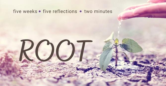 Root Video Series image
