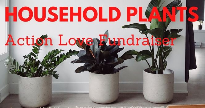 Ongoing Action Love Plant Fundraiser
