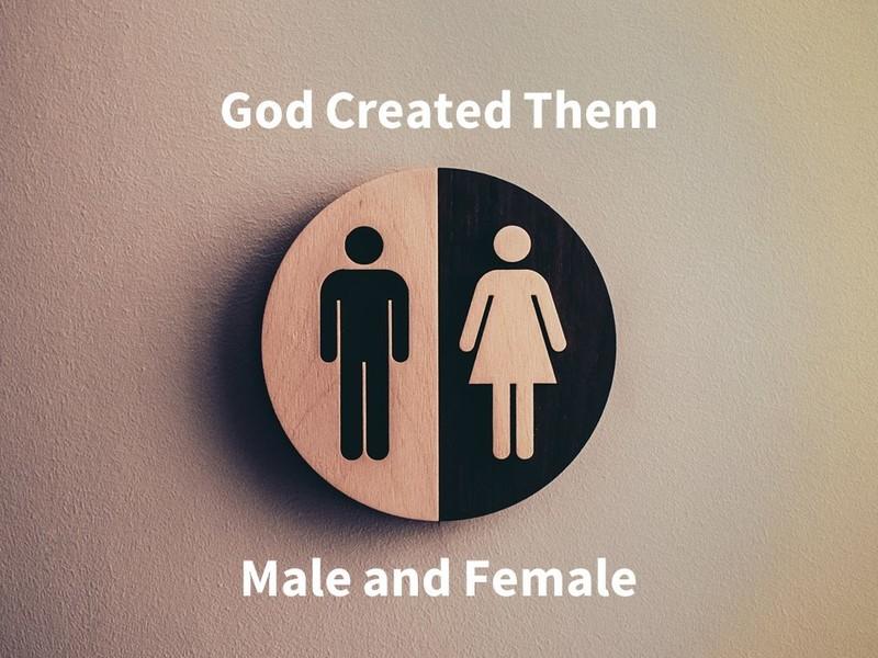 God Created Them Male and Female