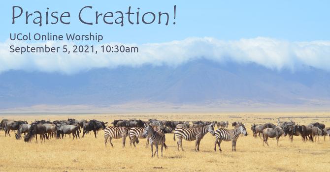 Praise Creation!