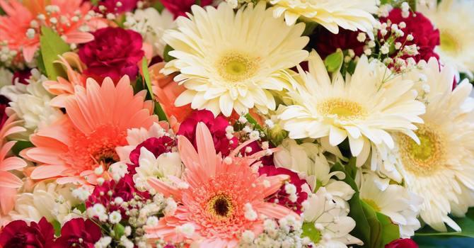 Flower Coordinator image
