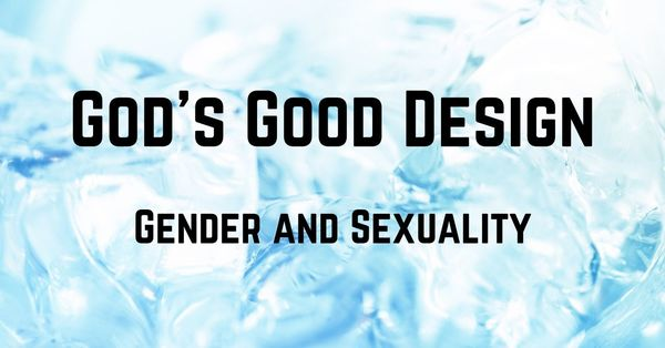 God's Good Design - Gender and Sexuality