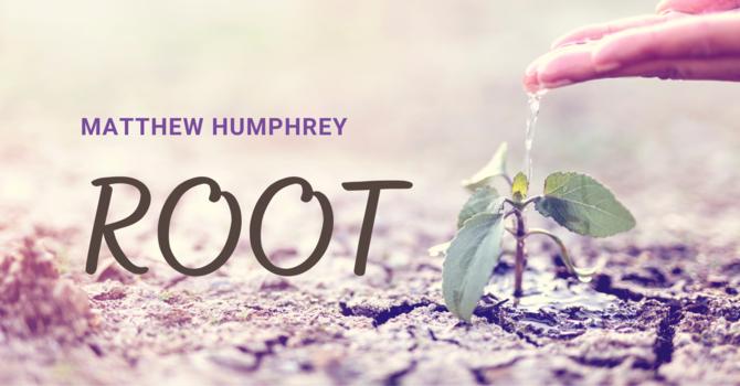 Root: episode 2