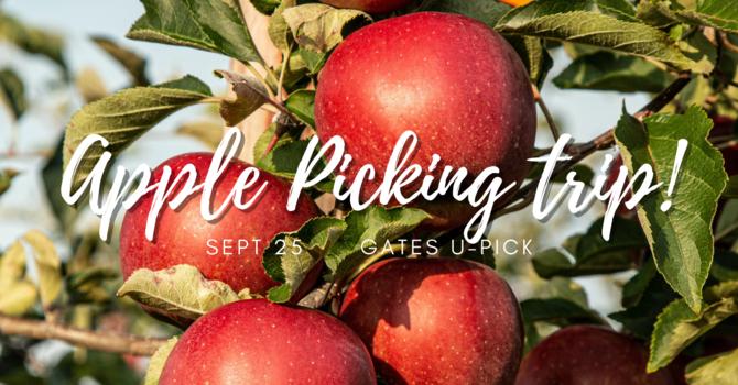 Apple Picking Trip!
