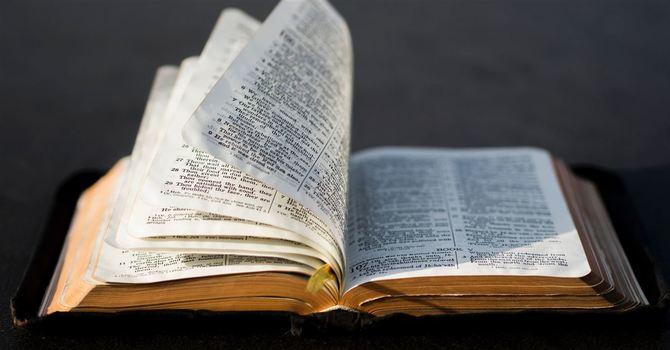 Drop-In Bible Study