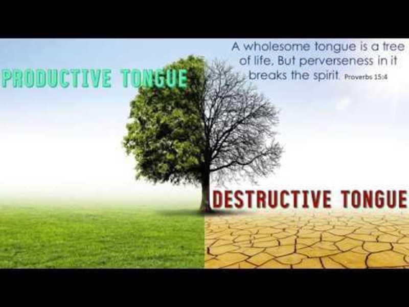 Productive? or Destructive?
