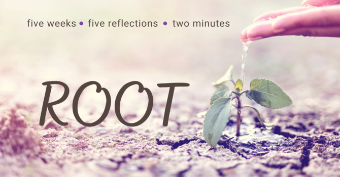 Root: episode 1 image
