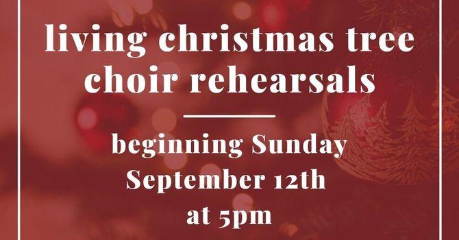 Living Christmas Tree Choir Rehearsals