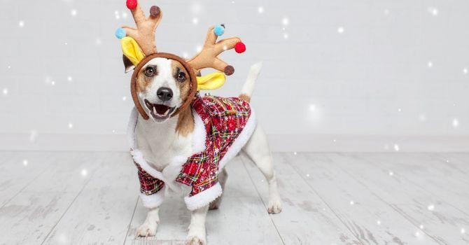 Merry & Bright Dress-Up