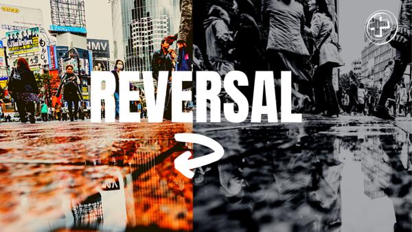 Reversal (2021)