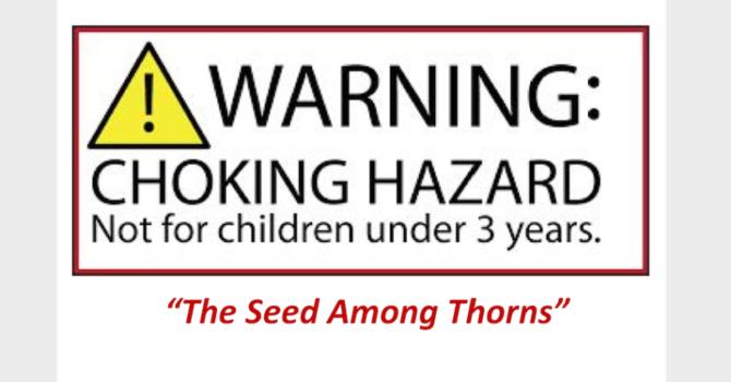 Choking Hazard: The Seed Among Thorns - Audio