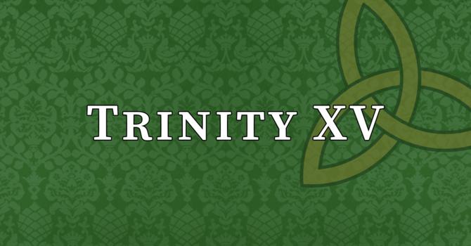 Trinity XV