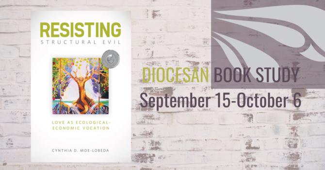 Diocesan On-Line Book Study