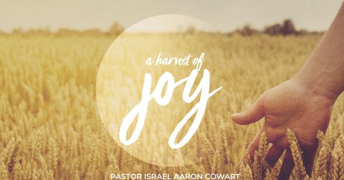 A Harvest of Joy