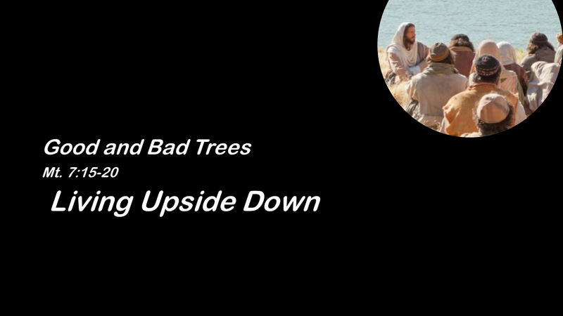 Good Trees and Bad Trees