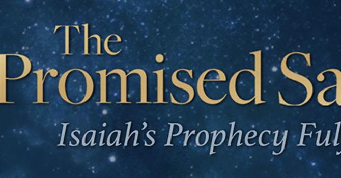 God Promised a Savior