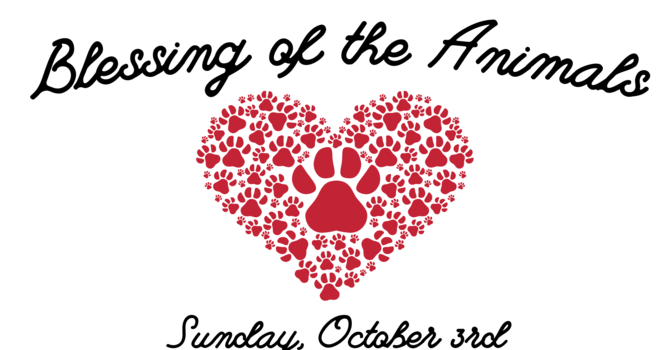 Blessing of the Animals for St. Francis Day