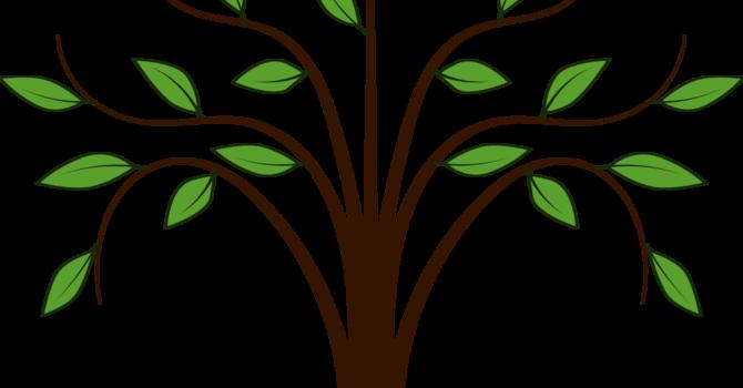 Greening Committee