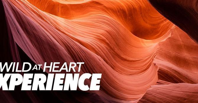 The Wild At Heart Experience